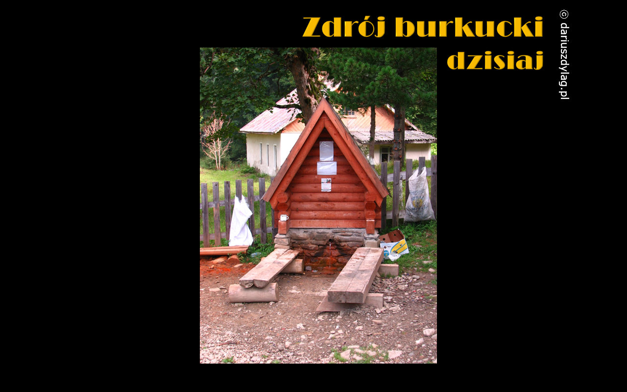 burkut7