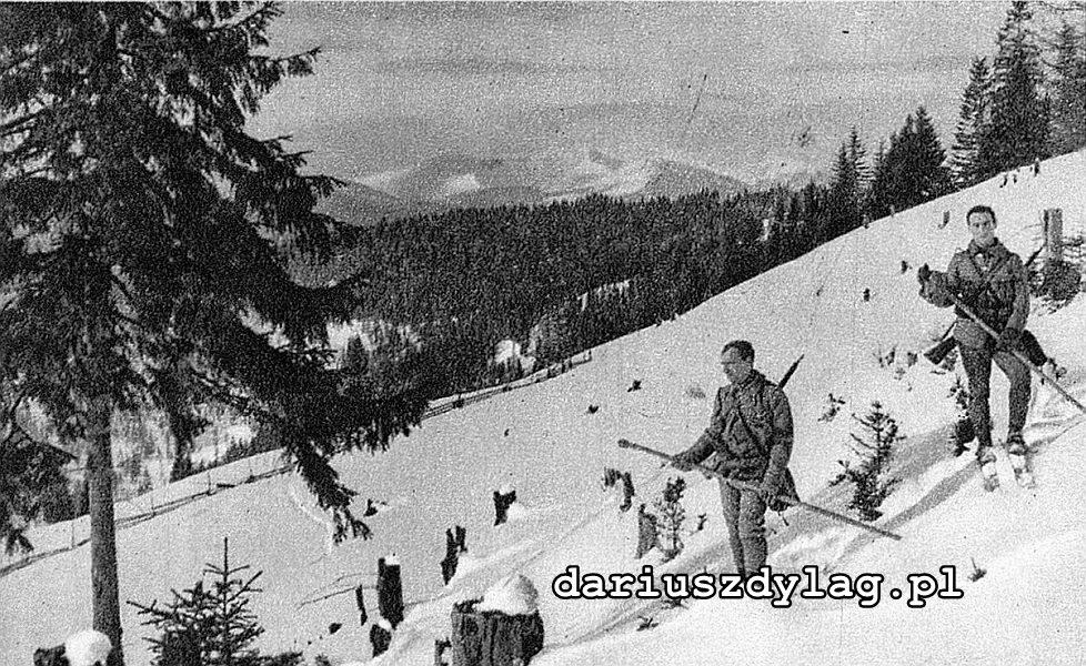 Legionowy patrol telefoniczny na nartach w rejonie Flutoriki.