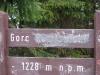 Faktycznie, u Nyki, Gorc Kamienicki to m.in. polana między Gorcem a wzniesieniem Gorca Kamienickiego (ok. 1157 m n.p.m.)